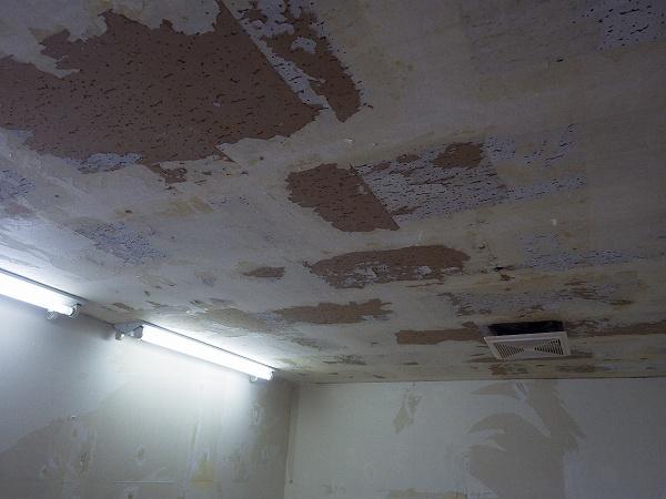 壁紙下地施工中2